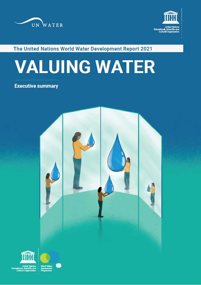 UN World Water Development Report 2021